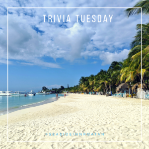 Trivia tuesday beach
